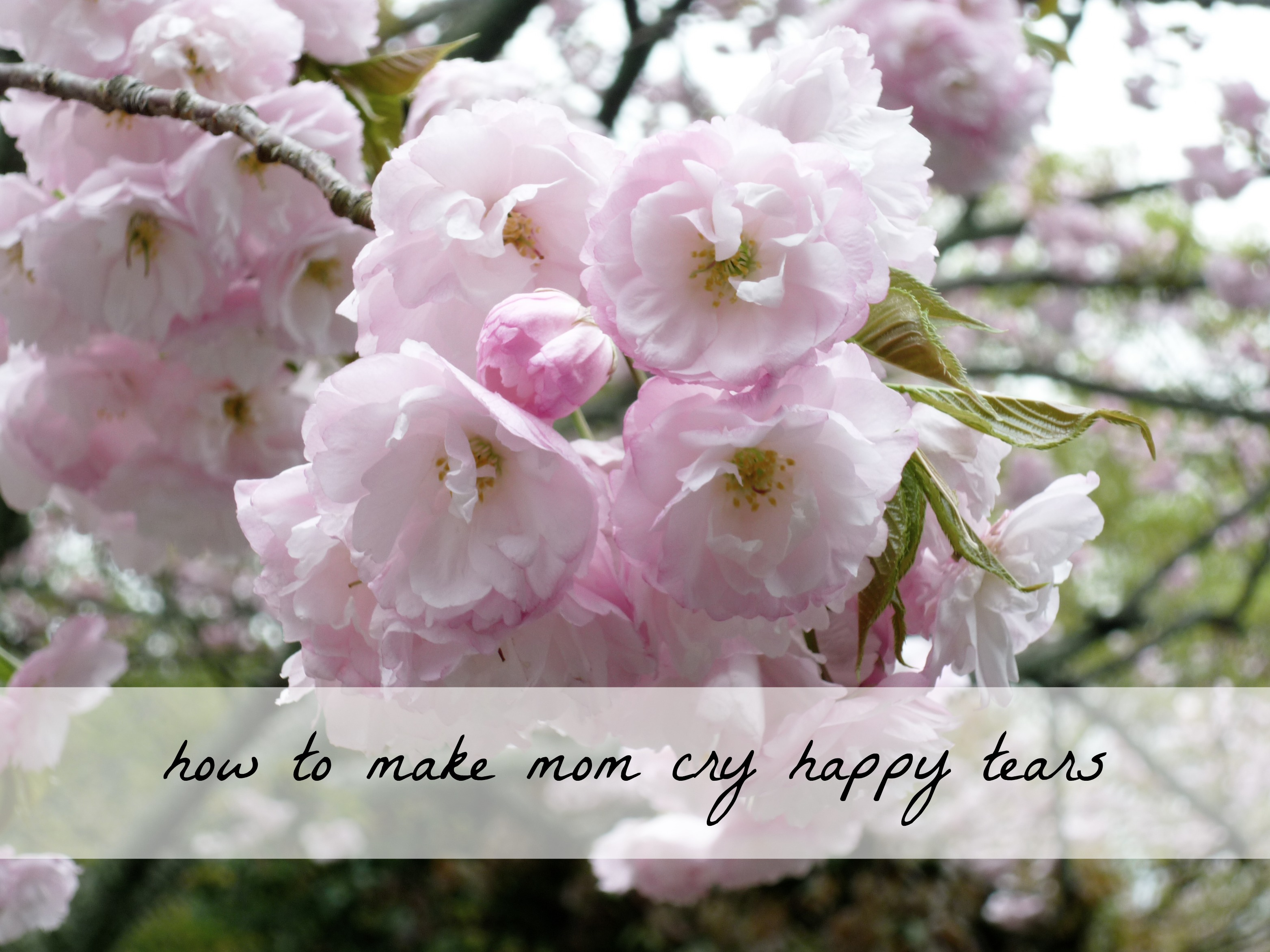 Mother's Day gift ideas that are so thoughtful, you'll have mom crying happy tears. Most of these ideas are inexpensive or even free.