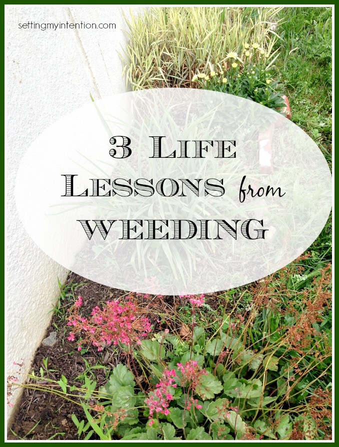 Sometimes in life, we're wise to take cues from the world around us; here are 3 life lessons I learned from weeding.