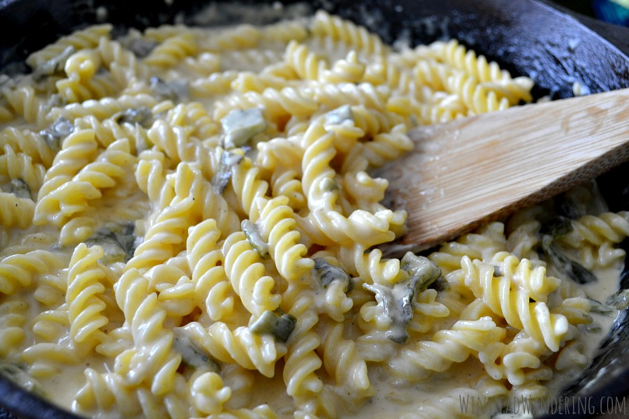 Pasta in Roasted Poblano Cheddar Cream Sauce is easy and quick enough for a weeknight meal, but flavorful and fancy enough for guests.